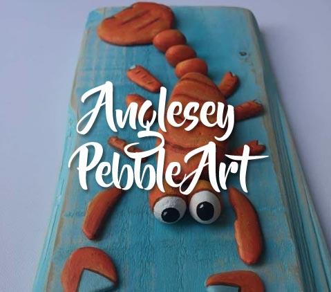 Anglesey pebble Art